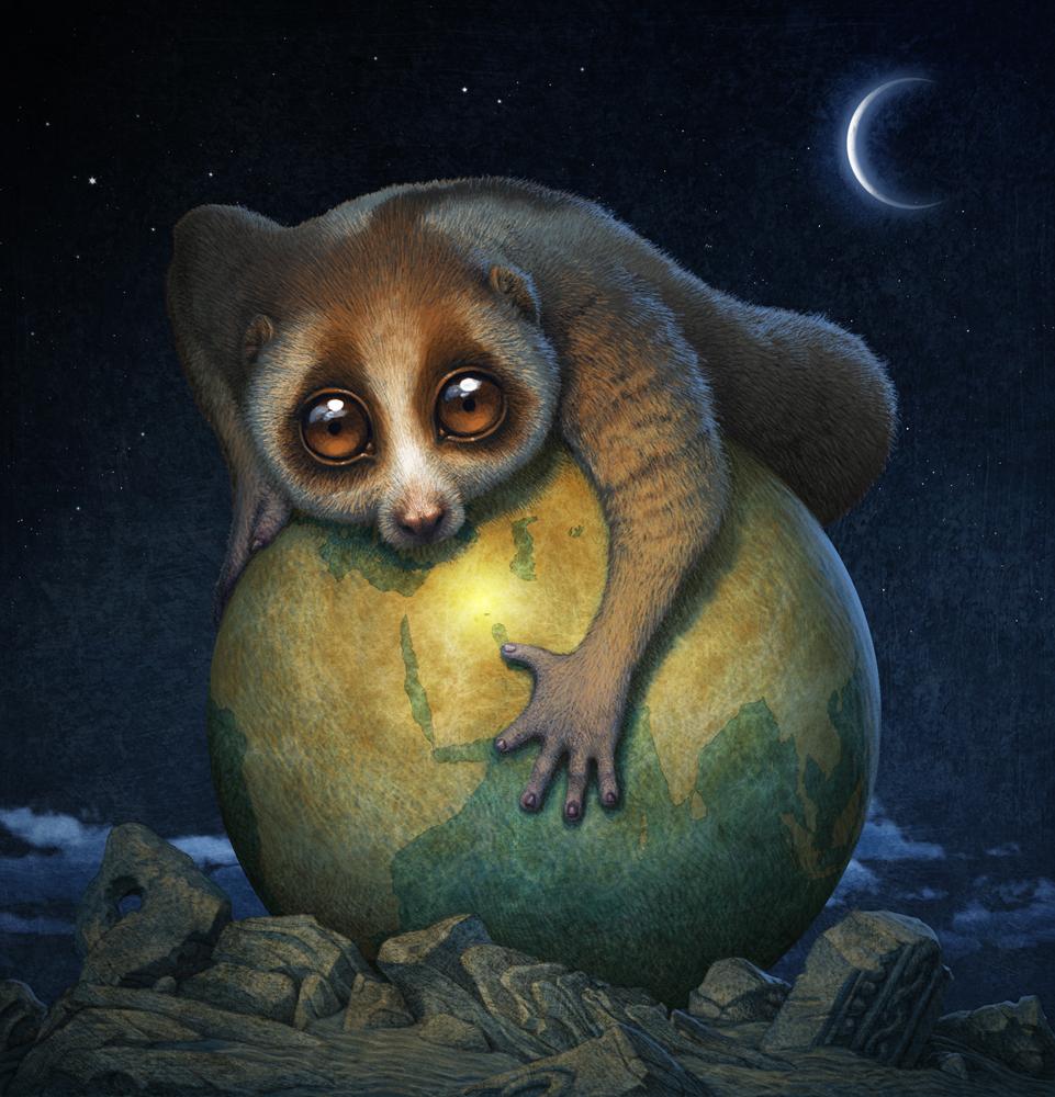 肥胖动物星球动画