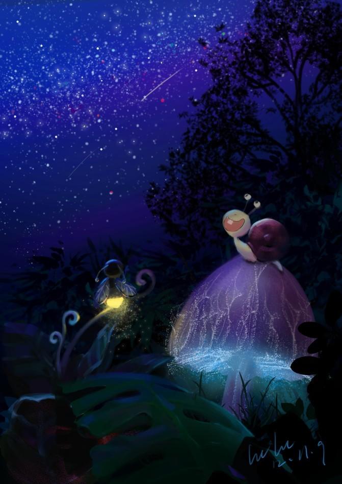 森林的夜晚