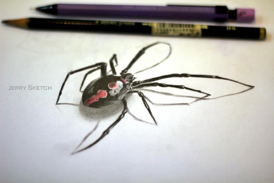 3d 蜘蛛 由 jerrychin
