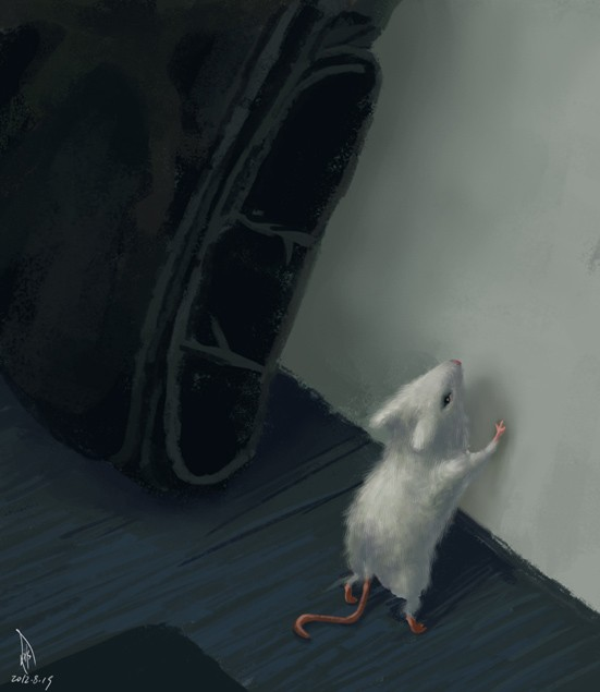 小鼠吉姆萨染色手绘图