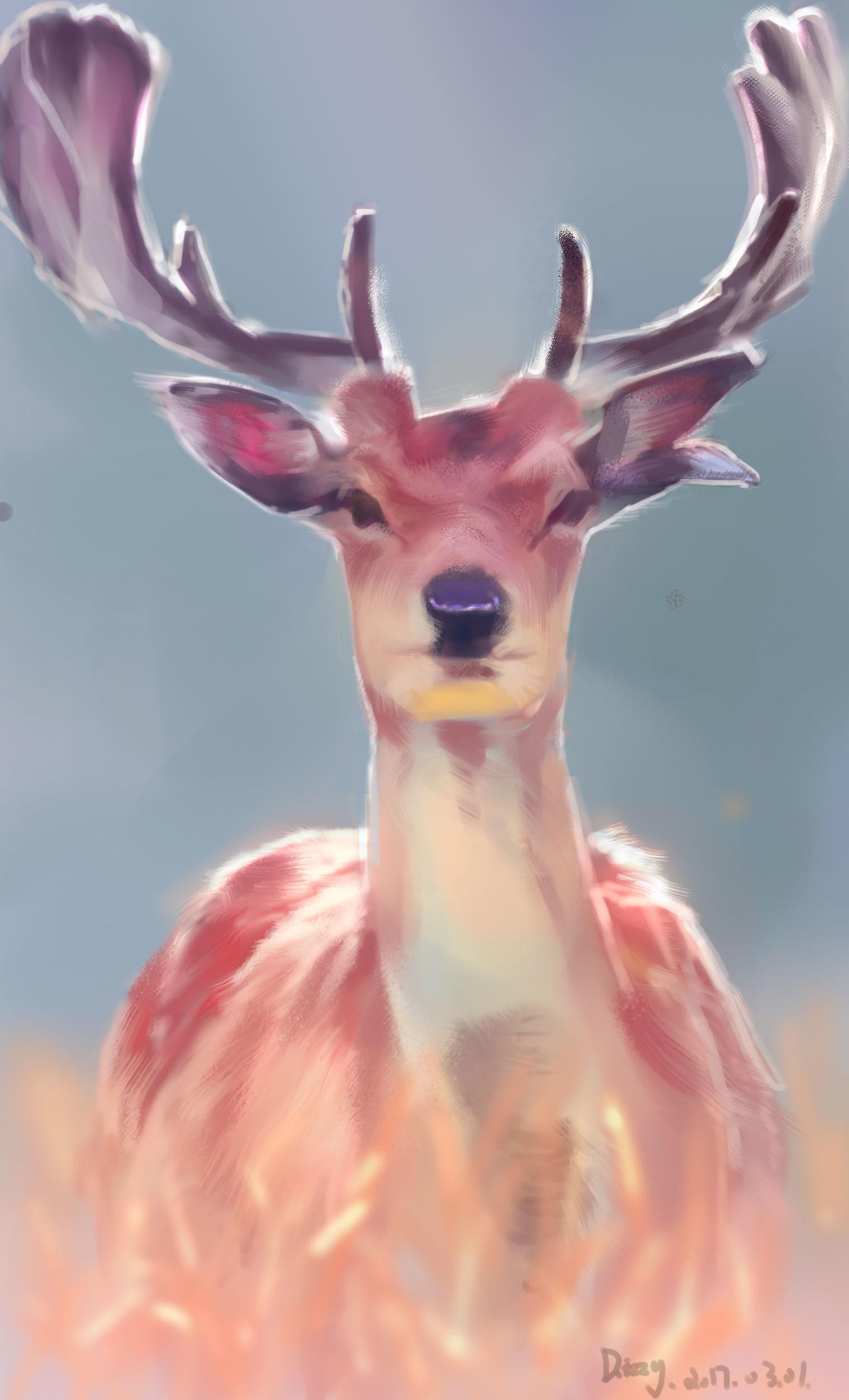 手机图片可爱小鹿