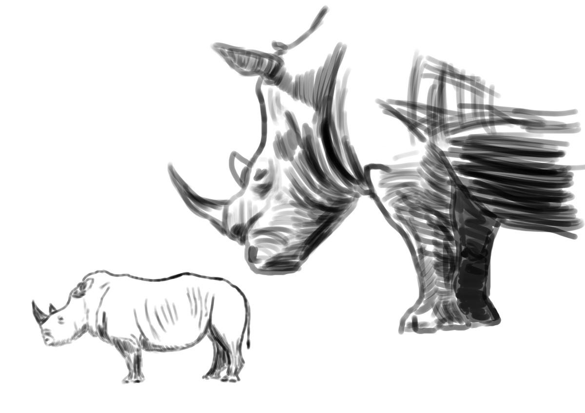 犀牛头结构素描