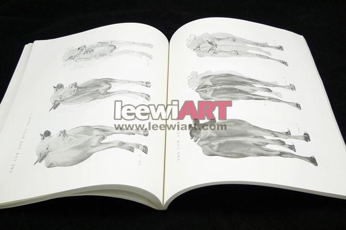 动物解剖图谱《an atlas