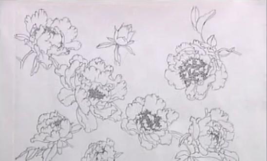 友基数位板国画牡丹技法小教程图片