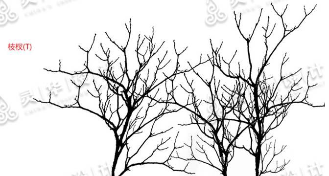竹林简笔画图片大全-灵华水墨画笔4.0 全新呈现图片